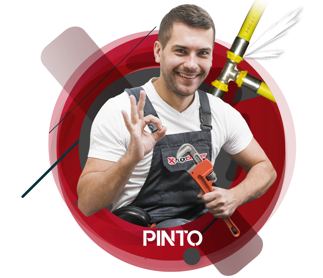 reparación fuga de gas natural en Pinto